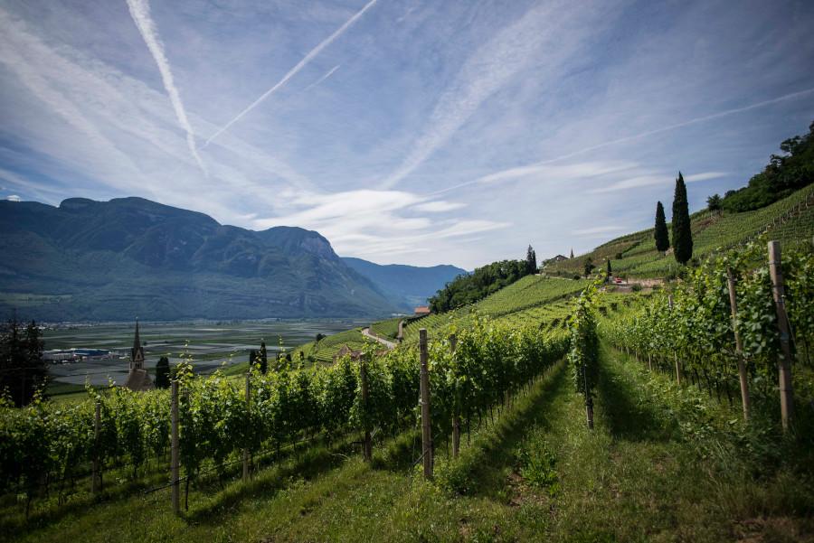 percorso-vino-900x601